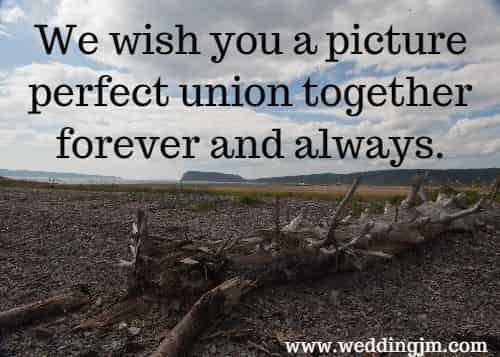 We wish you a picture perfect union together forever and always.