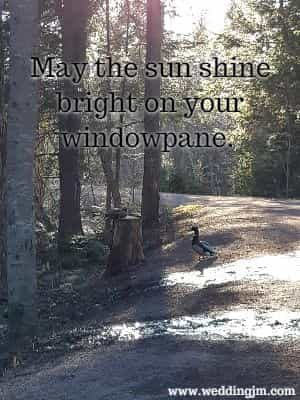 May the sun shine bright on your windowpane.