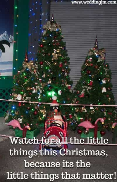 Watch for all the little things this Christmas, because its the little things that  	matter!