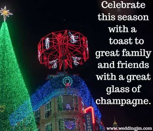 Celebrate this season with a toast to great family and friends with a great 	glass of champagne.