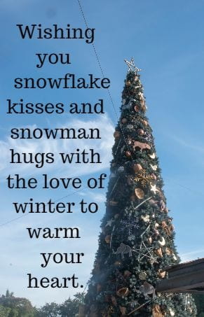 Wishing you snowflake kisses and snowman hugs with the love of winter to 	warm your heart.
