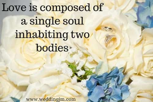 Love is composed of a single soul inhabiting two bodies