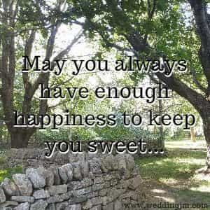 May you always have enough happiness to keep you sweet