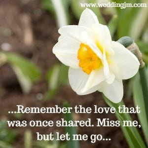 Remember the love that was once shared. Miss me, but let me go