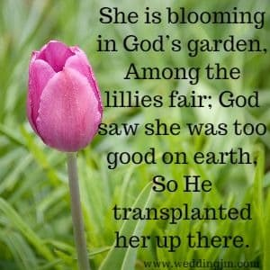 She is blooming in God's garden, Amoung the lillies fair;  	God saw she was too good on earth, So He transplanted her up there.